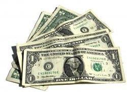 Назван среднегодовой курс доллара на 2010 год