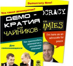 США указали размеры помощи демократии в России