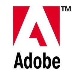 Два москвича сядут в тюрьму за пиратский Adobe