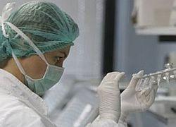 Эпидемия свиного гриппа начнется в России в ноябре