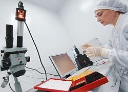 В России уточнят приоритеты в науке путем их сокращения