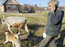 Все больше москвичей сбегают из города в деревню