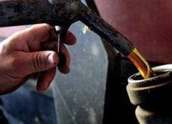 Вытеснит ли биотопливо бензин?