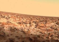 Ученый обнаружил жизнь на Марсе