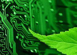 """В 2010 году появится новый \""""экологический\"""" домен .eco"""
