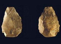 Ученые обнаружили старейшие в Европе каменные топоры