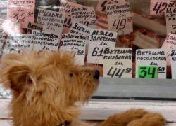 Впервые за год в России зафиксирована нулевая инфляция