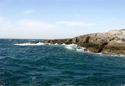 Атлантический - самый соленый океан