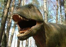 Тираннозавров сгубила инфекция