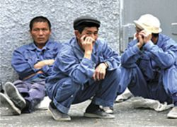 Преступность среди мигрантов выросла почти на 40%