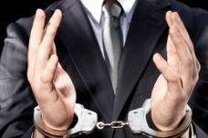 МВД избавило Госдуму от борца с коррупцией