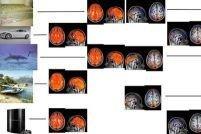 Возможна активизация мозга при просмотре кино