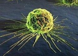 Наша психология сегодня - психология раковой клетки
