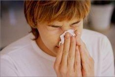 Какими аллергенами кишат улицы