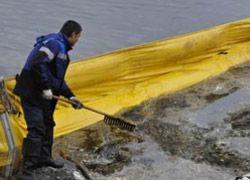 Отходы СШ ГЭС не нанесли ущерба природе
