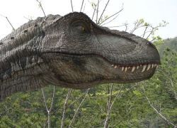 Ученые смогут восстановить геном динозавра
