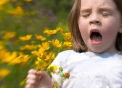 Почему мы все чаще сталкиваемся с аллергией