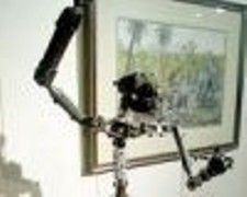 На аукционе Christie\'s продадут скелет Кинг Конга