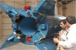 Иран выведет в космос биокапсулу