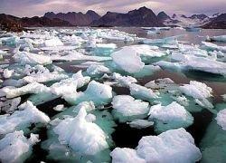 Арктика останется без летнего льда уже через 20 лет