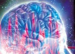 Российские ученые сделали мозг прозрачным