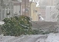 В Европе бушует снежная стихия