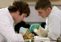 У московских студентов-медиков нашли свиной грипп