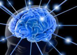 Мозг умеет включать экономный режим работы