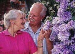 Пожилые люди обладают иммунитетом от свиного гриппа