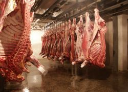 Россия запретила ввоз мяса из четырех стран