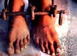 В Дагестане освободили тридцать рабов