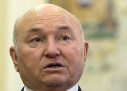 Лужков разберется с Жириновским