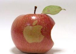Apple ничего не выпустит до конца года