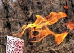 В Канаде пытались сорвать эстафету олимпийского огня