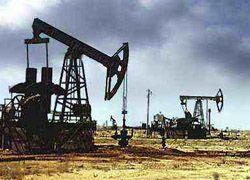 Добыча нефти в РФ с начала года выросла на 0,8%
