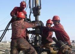Цены на нефть показали устойчивый рост