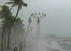 Тропическая буря во Вьетнаме унесла жизни 11 человек
