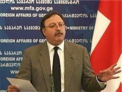 Госдума не лишит гражданства главу грузинского МИДа
