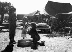 Беженцам из арабских стран дали права