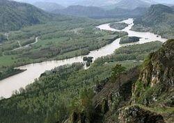 Россия продает лес Киотскому протоколу