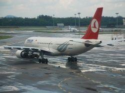 Turkish Airlines и Аэрофлот могут создать совместное предприятие