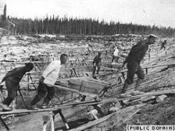 Изучение истории сталинских репрессий - удел энтузиастов