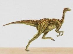 Впервые ученые узнали, какого цвета были динозавры