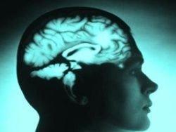 Ученые превратили клетки кожи в нейроны