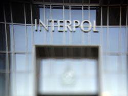Кризис не сказался на международной преступности