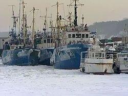 Калининград завалило снегом