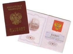 Гражданство РФ в 2009 году приняли 400.000 человек