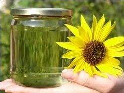 Производство биодизеля доверят бактериям