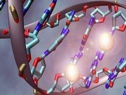 Ученые расшифровали геном клетки рака мозга