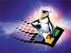 Использование Linux приравняли к пиратству